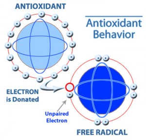 Antioxidants Defined